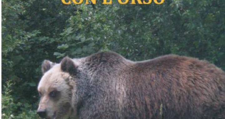 Un orso guarda verso l'obiettivo, esempio di una possibile e perfetta condivisione uomo orso