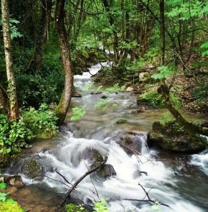 Un ruscello nella natura