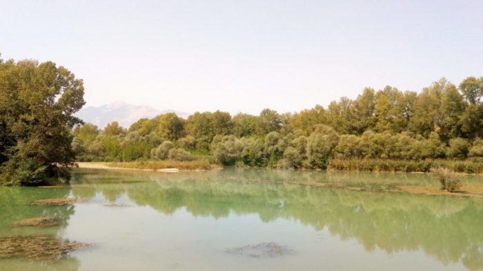Visuale del lago della Serranella con intorno gli alberi