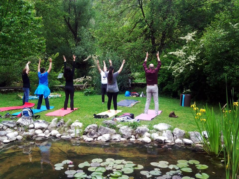 Cinque persone di spalle che praticano Yoga in mezzo al verde e al silenzio