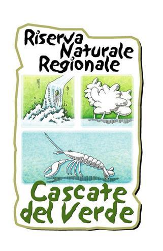 Il logo delle cascate Rio Verde è un disegno realizzato con acquarello quindi con colori tenui. Una cascatain alto a sinistra, un albero bianco nel prato verde e sotto un crostaceo sotto al mare azzurro
