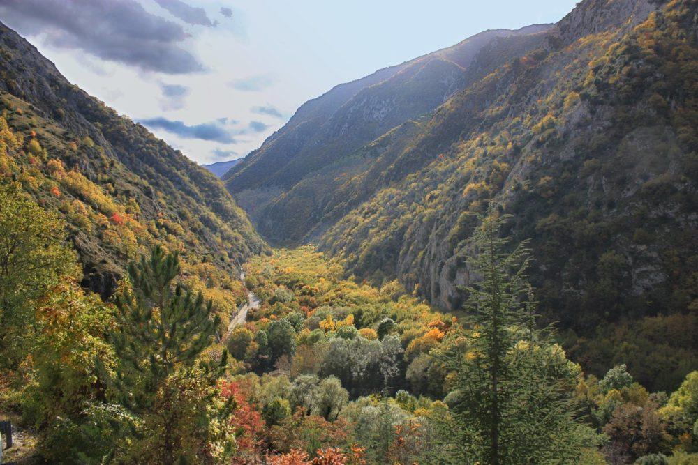 Un paesaggio autunnale con alberi dai tanti colori (arancio, giallo, verde) a far loro da cornice delle montagne