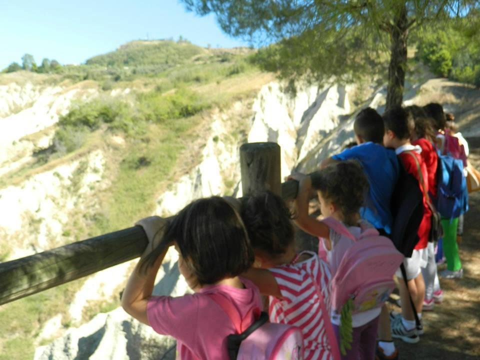 Bambini osservano la natura da dietro una staccionata