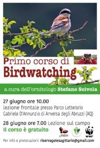 Birdwatching ad Anversa